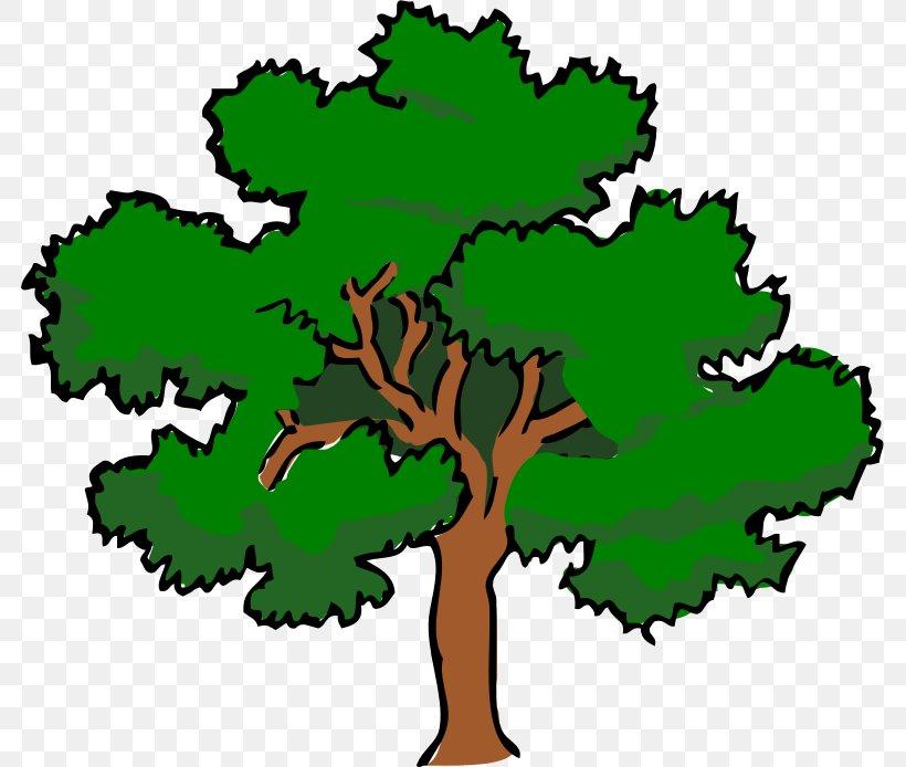 Southern Live Oak Tree Clip Art, PNG, 781x694px, Southern.
