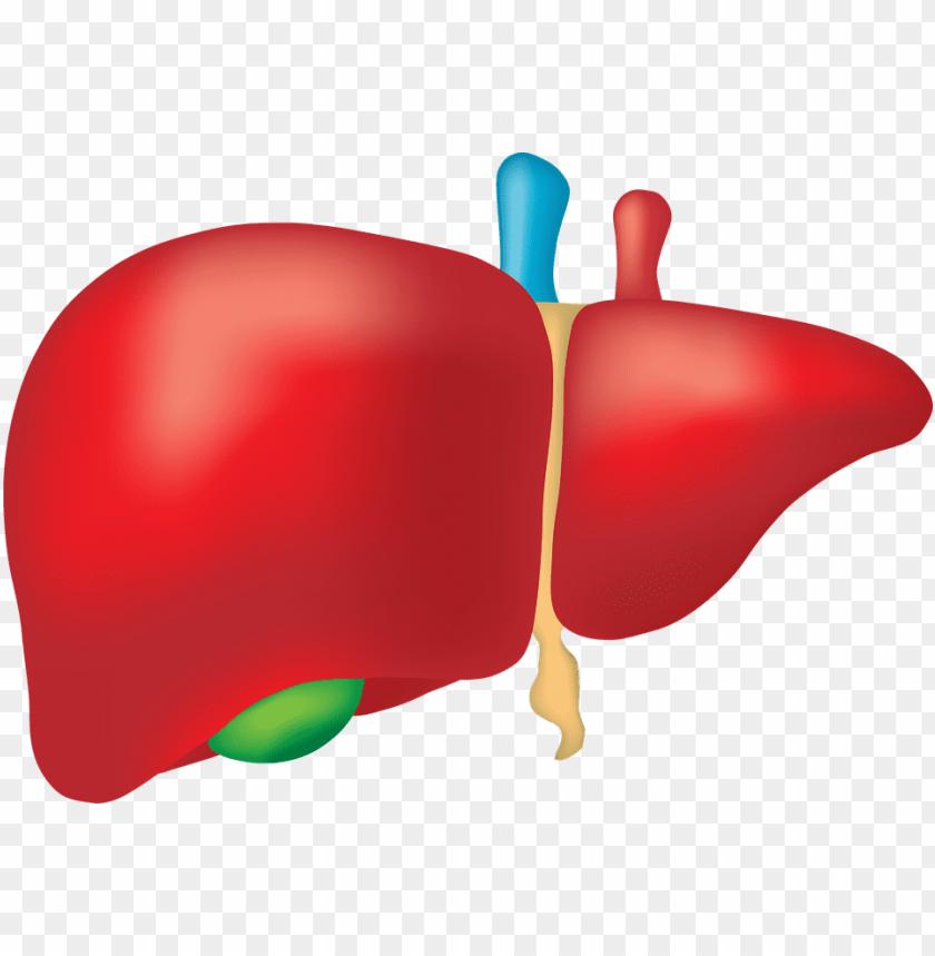 clipart transparent canabis prevents alcohol liver.