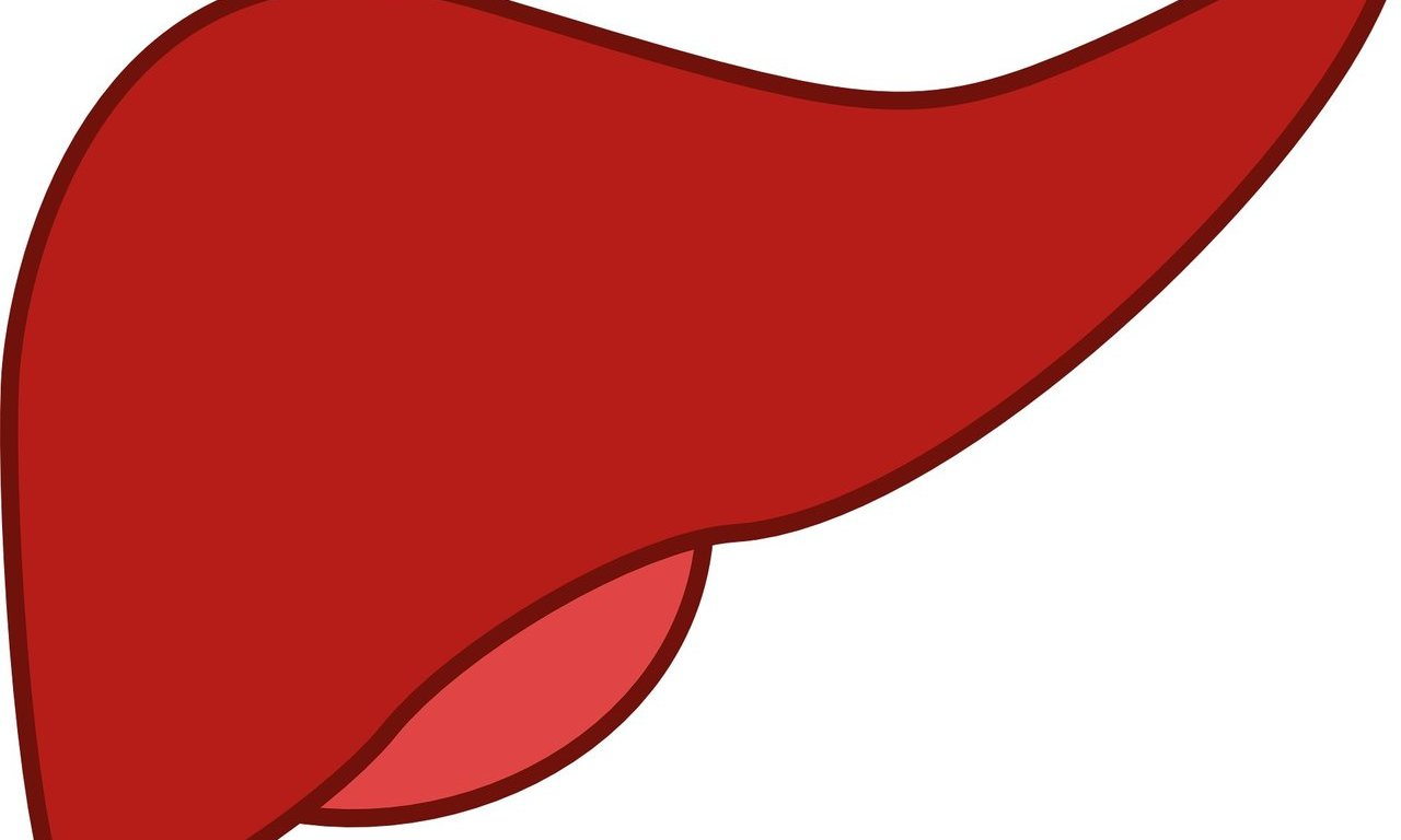 Liver transplants double for alcohol.