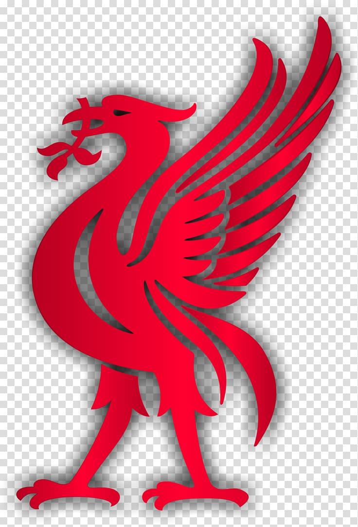 Red bird illustration, Liverpool F.C. Liver bird Premier.