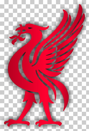 932 Liverpool PNG cliparts for free download.