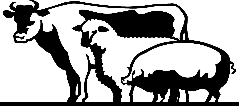 Livestock Judging Clip Art N4 free image.