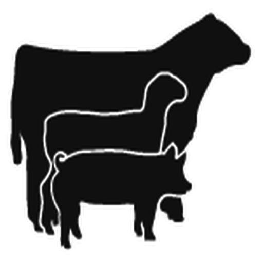 Livestock Judging Score Calculator by Jeffrey Schroeder.