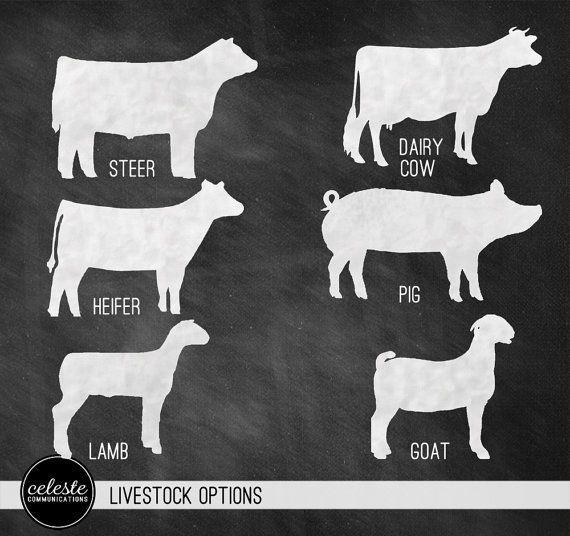livestock show animal clip art.