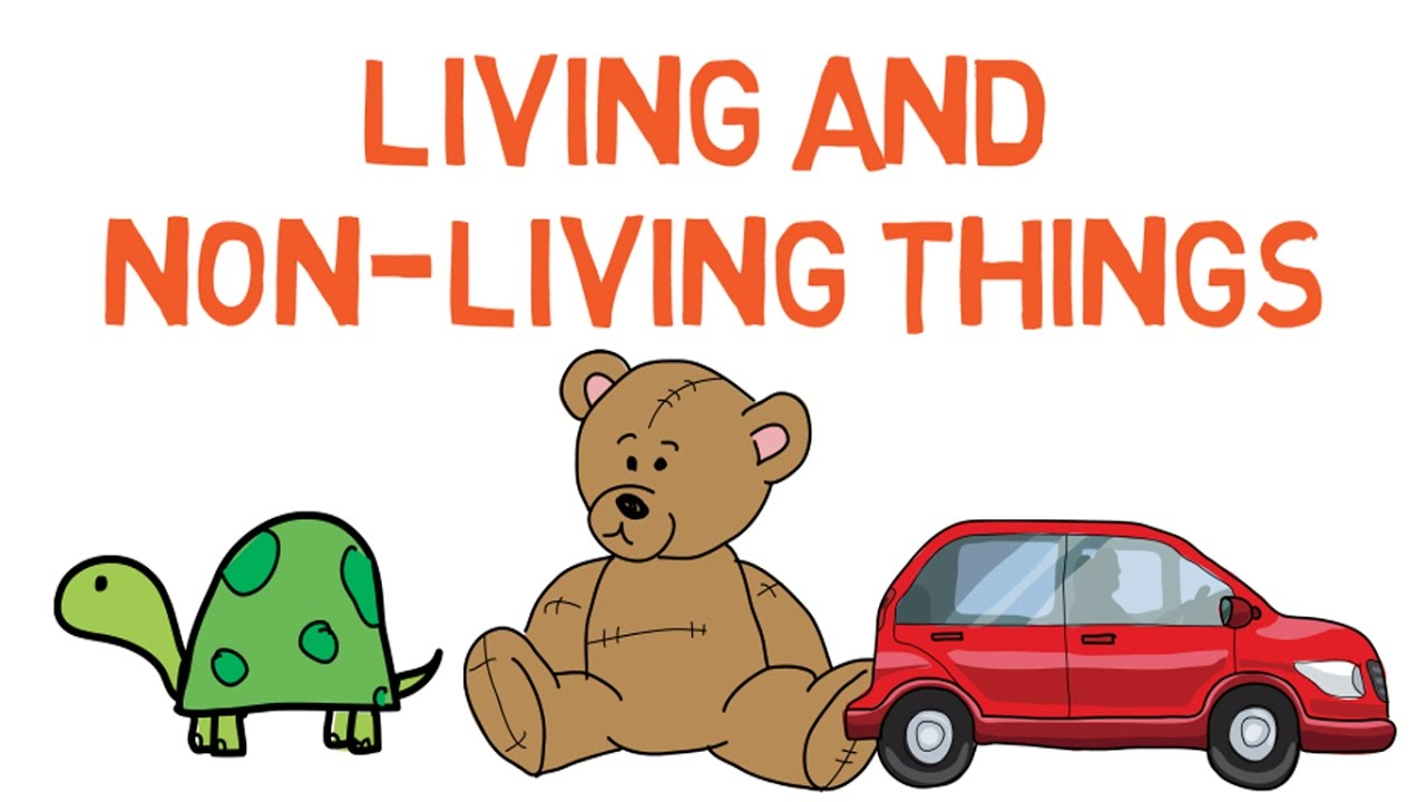 Non Living Things Pictures For Kids Clipart.