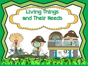 1000+ images about needs of living things on Pinterest.