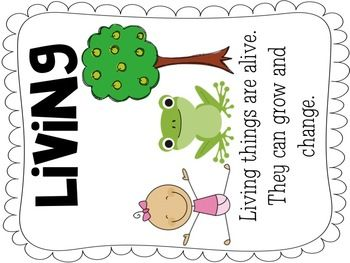 Living thing clipart.