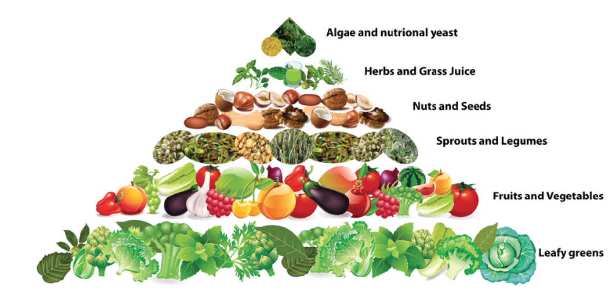 The Benefits of Raw Food.