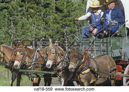Stock Photograph of Living History participants in wagon train.