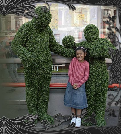 1000+ ideas about Human Tree on Pinterest.