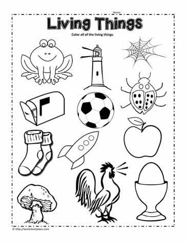 Living things clipart black and white 4 » Clipart Station.