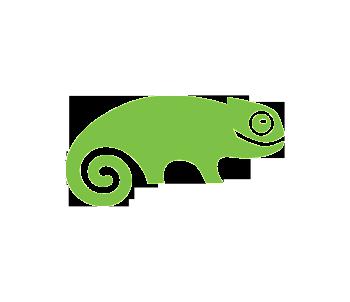 Lizard logo.