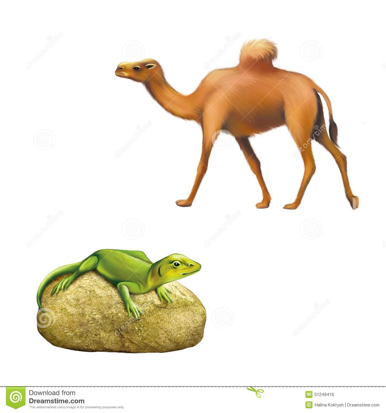 Lizard On Rock Clipart Clipground Paper Scissors Spock Spiderman Batman Wizard Glock We The Domestic Camel Walking Green Sitting Stock