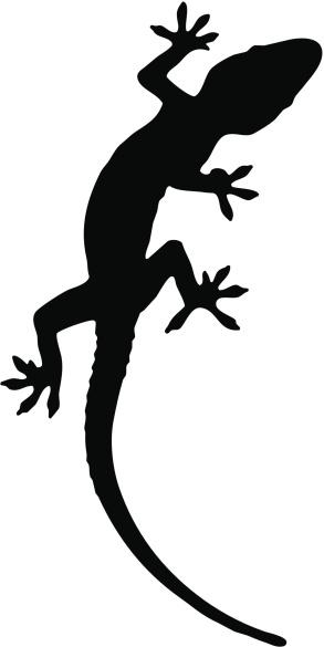 Gecko Silhouette.