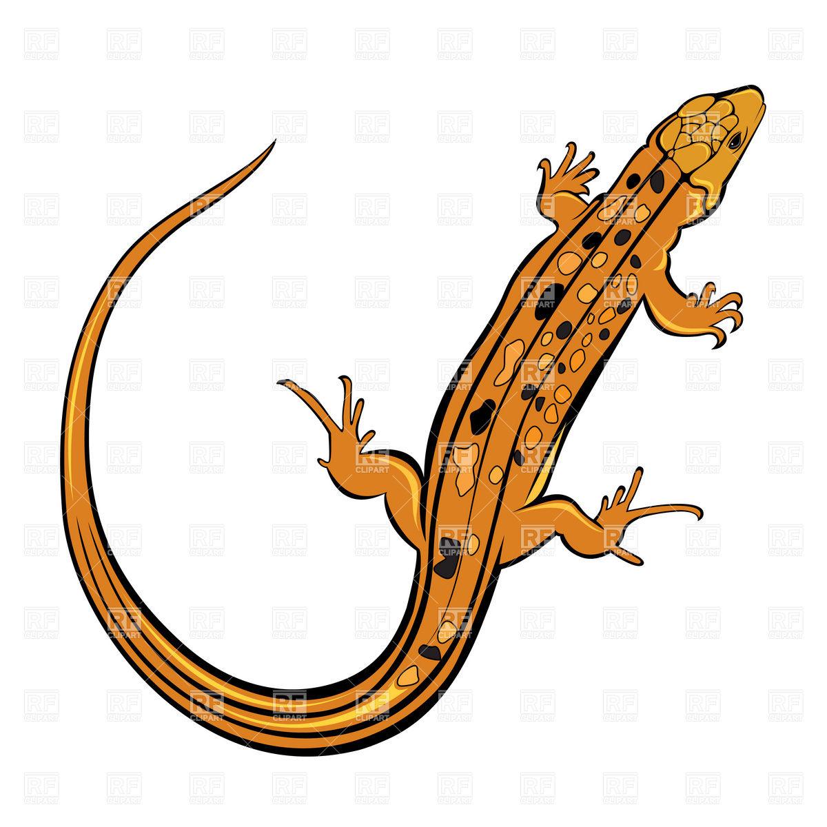 Lizards Clipart.