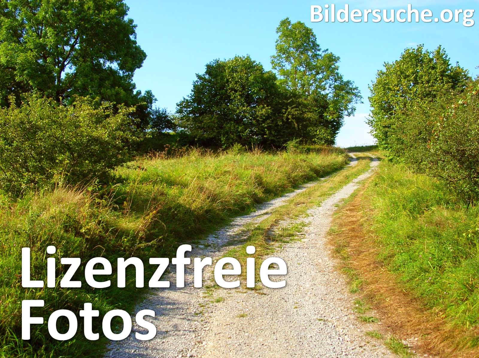 Lizenzfreie Bilder zur kostenlosen Nutzung.