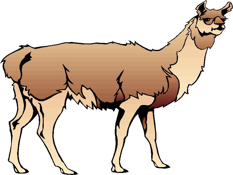 Llama Clip Art Cartoon.
