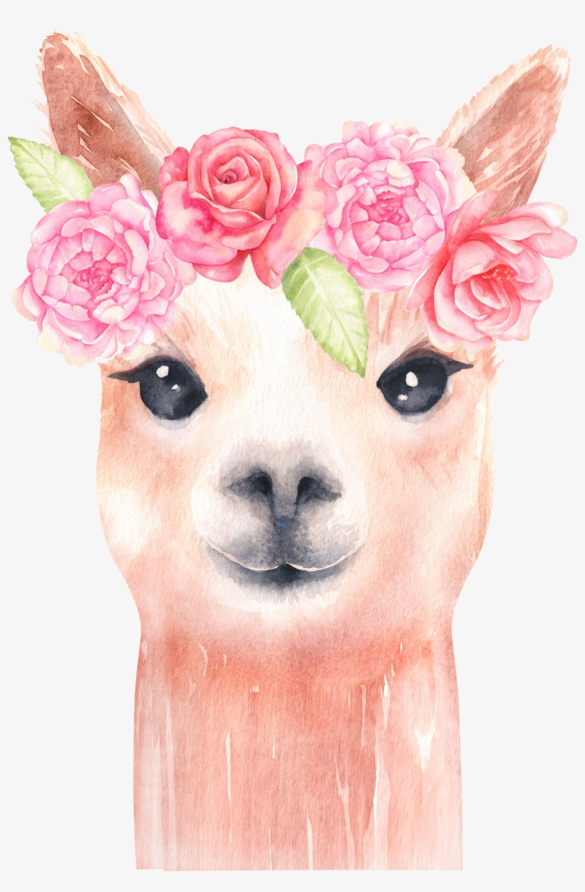 Alpaca And Flower Clipart/ Llama Clip Art/ Watercolor.