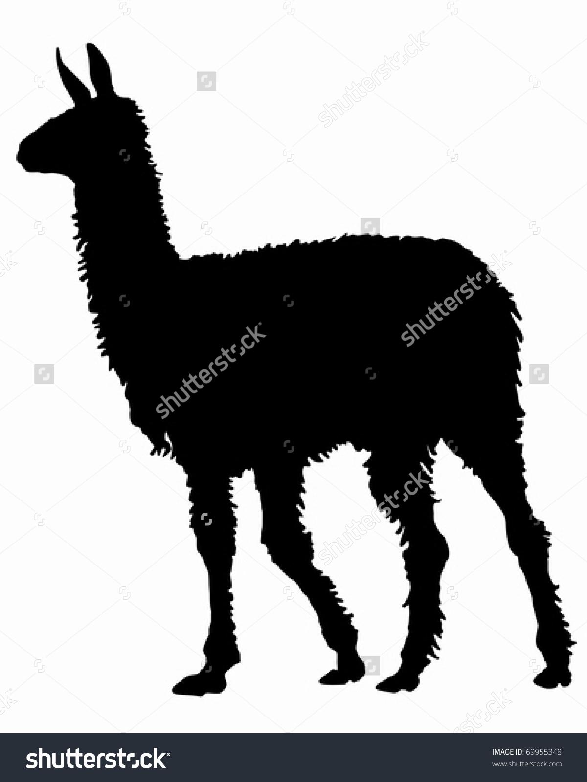 Lama Silhouette Stock Vector Illustration 69955348 : Shutterstock.