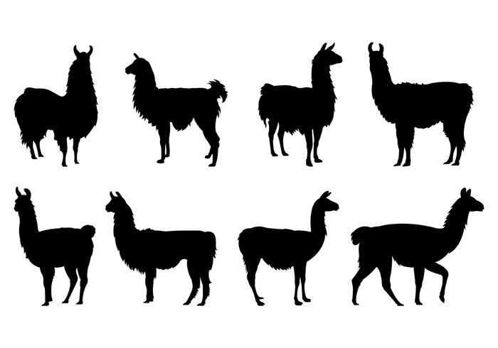 Llama Free Vector Art.