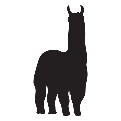 Isolated llama standing silhouette.
