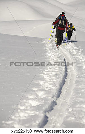 Stock Photography of Skiers traverse of backcountry terrain.