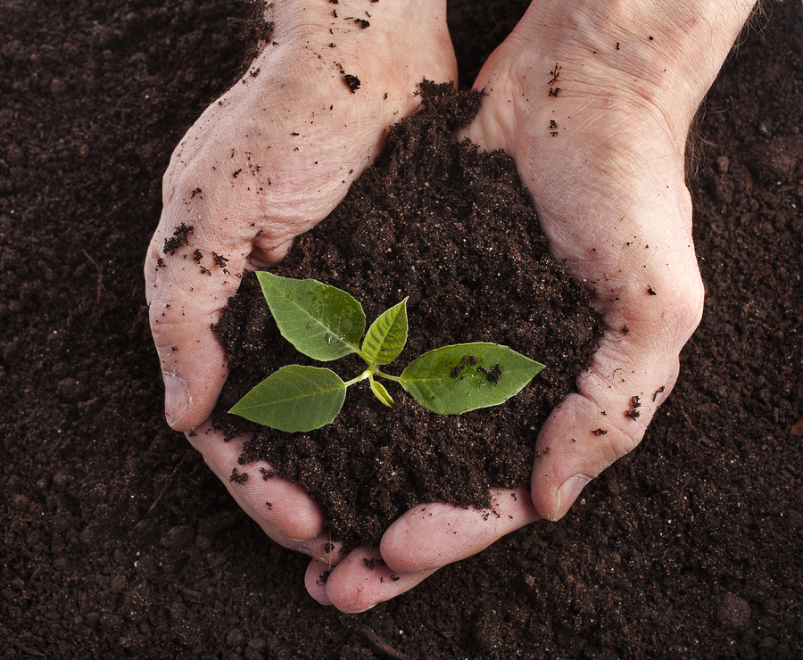 Kinds of Soil: The Dirt on These 7 Types of Dirt.