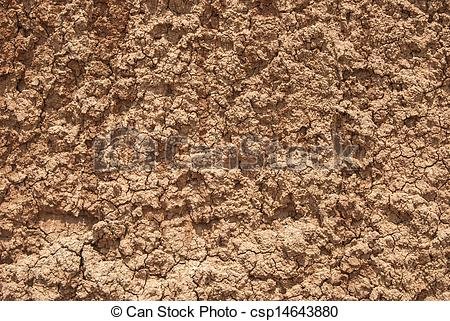 Pictures of Red clay loam.