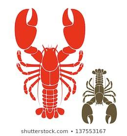 Lobster claw clipart 7 » Clipart Portal.