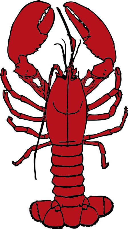 Clip art lobster clipart 2.