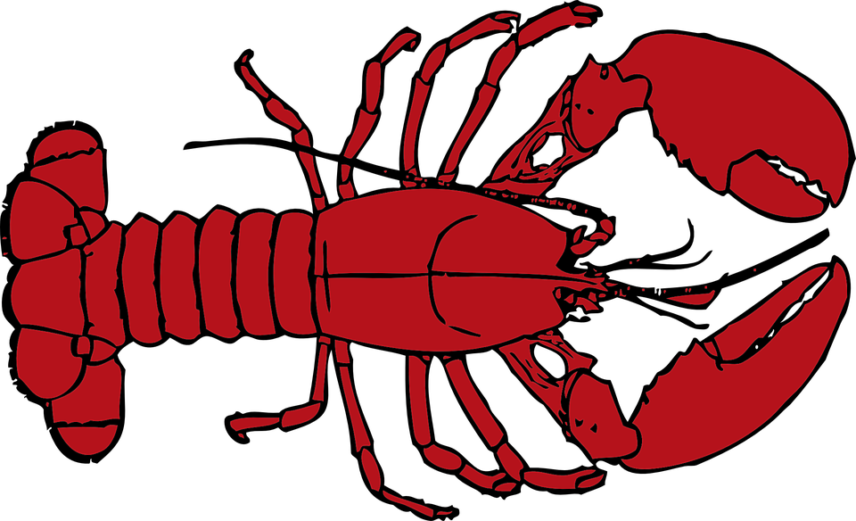 Free vector graphic: Lobster, Red, Crab, Crustacean.
