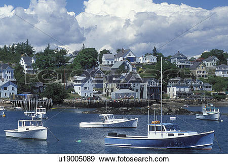 Stock Photograph of lobster boats, ME, Stonington, Maine, Deer.