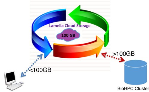 BioHPC Cloud Storage.