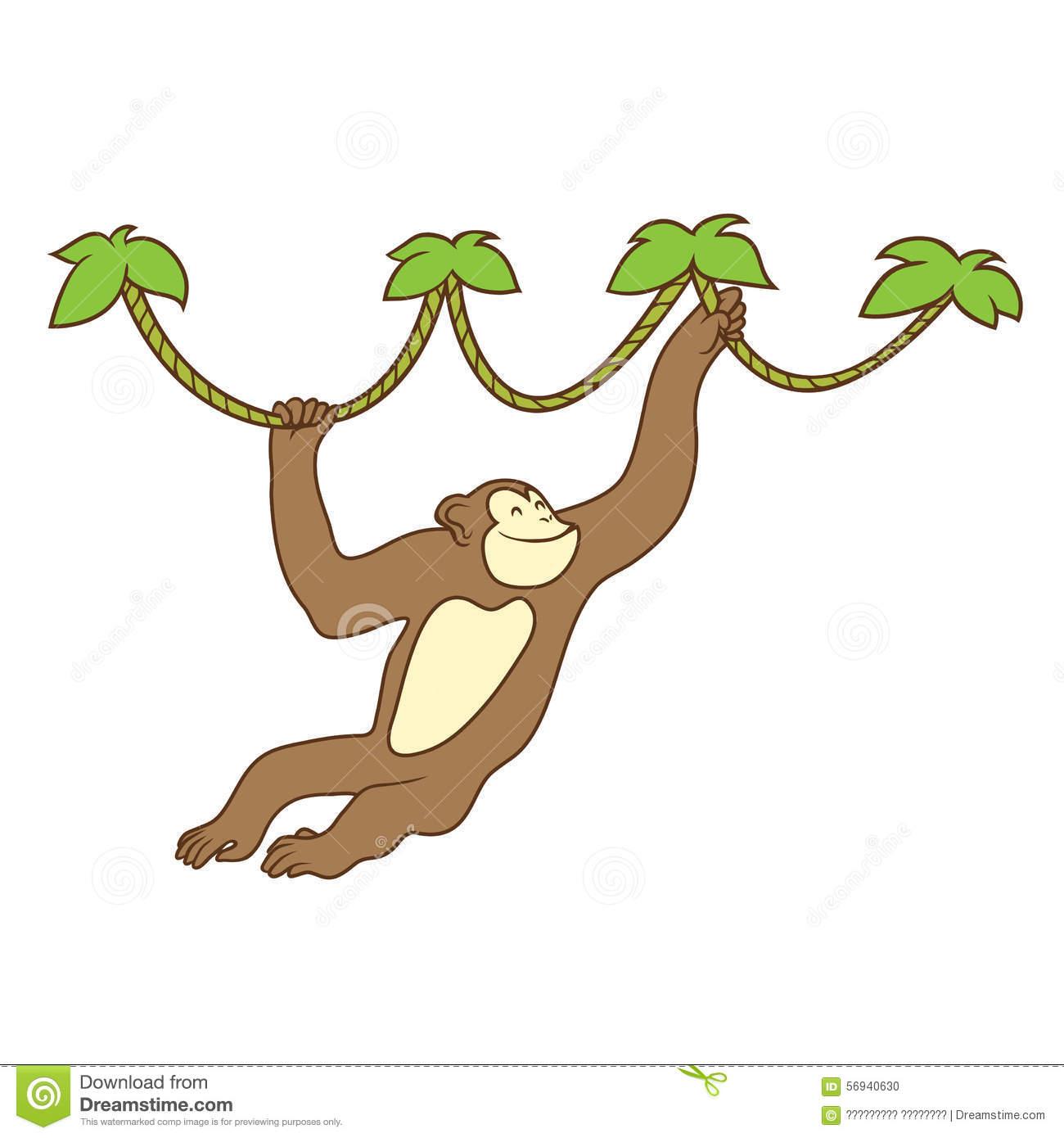 Monkey On Liana Royalty Free Stock Photos.