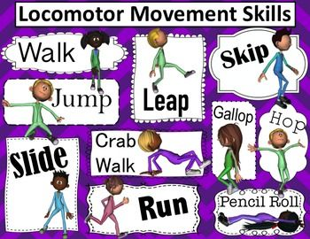 locomotor movements.