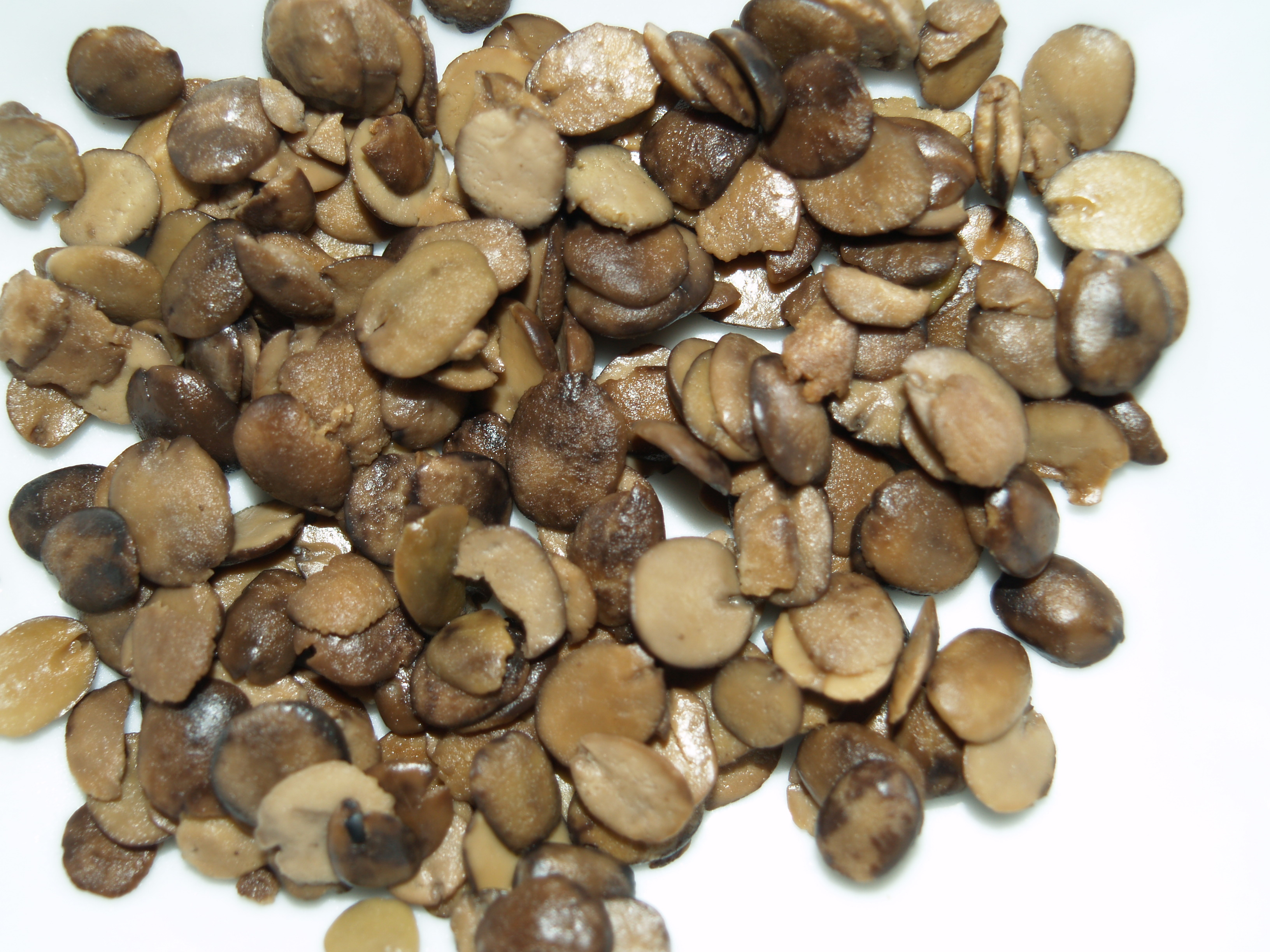 The Medicinal Wonders of Iru (locust beans).