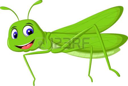 927 Locust Stock Vector Illustration And Royalty Free Locust Clipart.