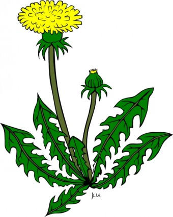Clipart pflanzen kostenlos.