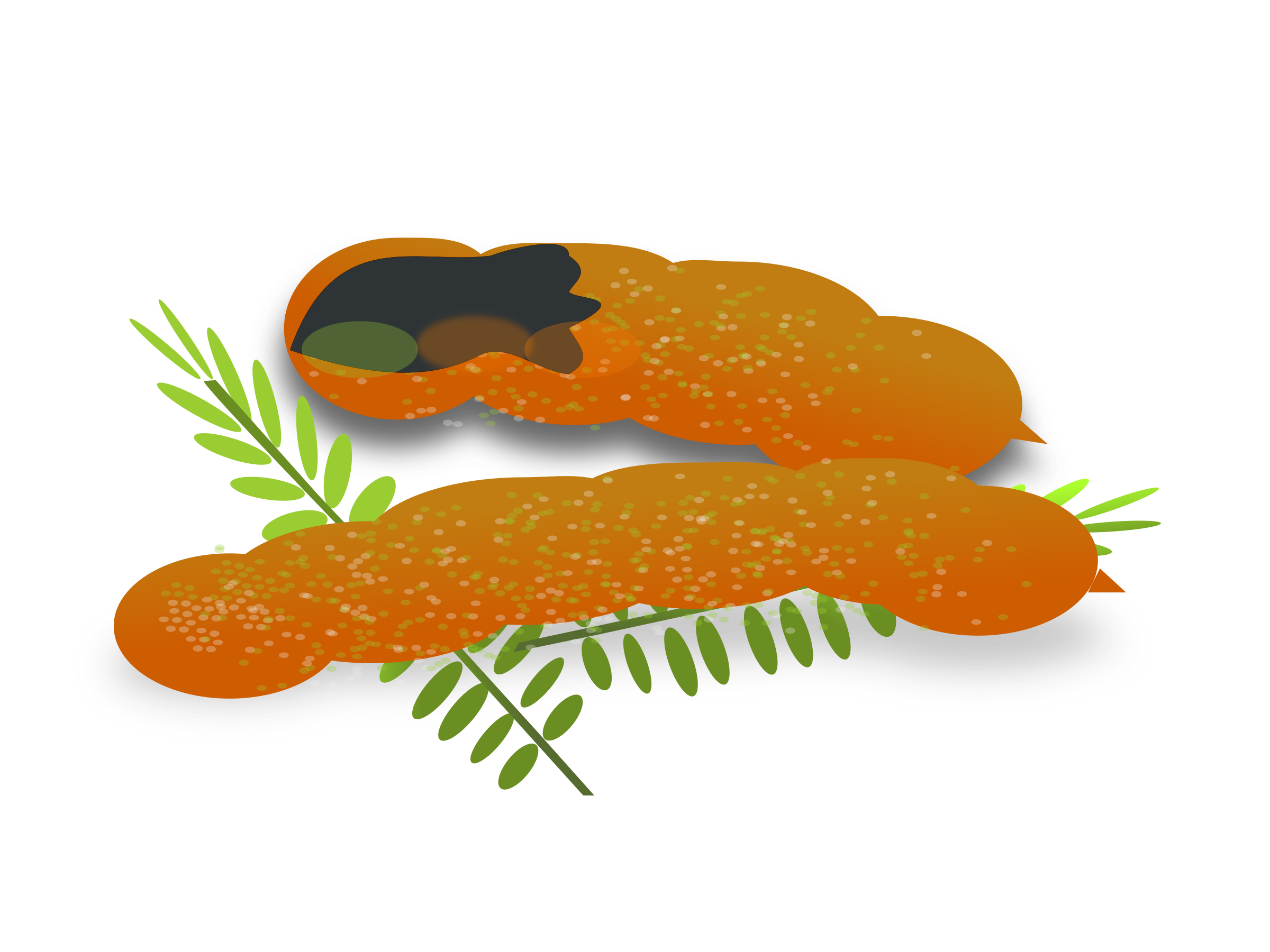 Leaves Clipart.