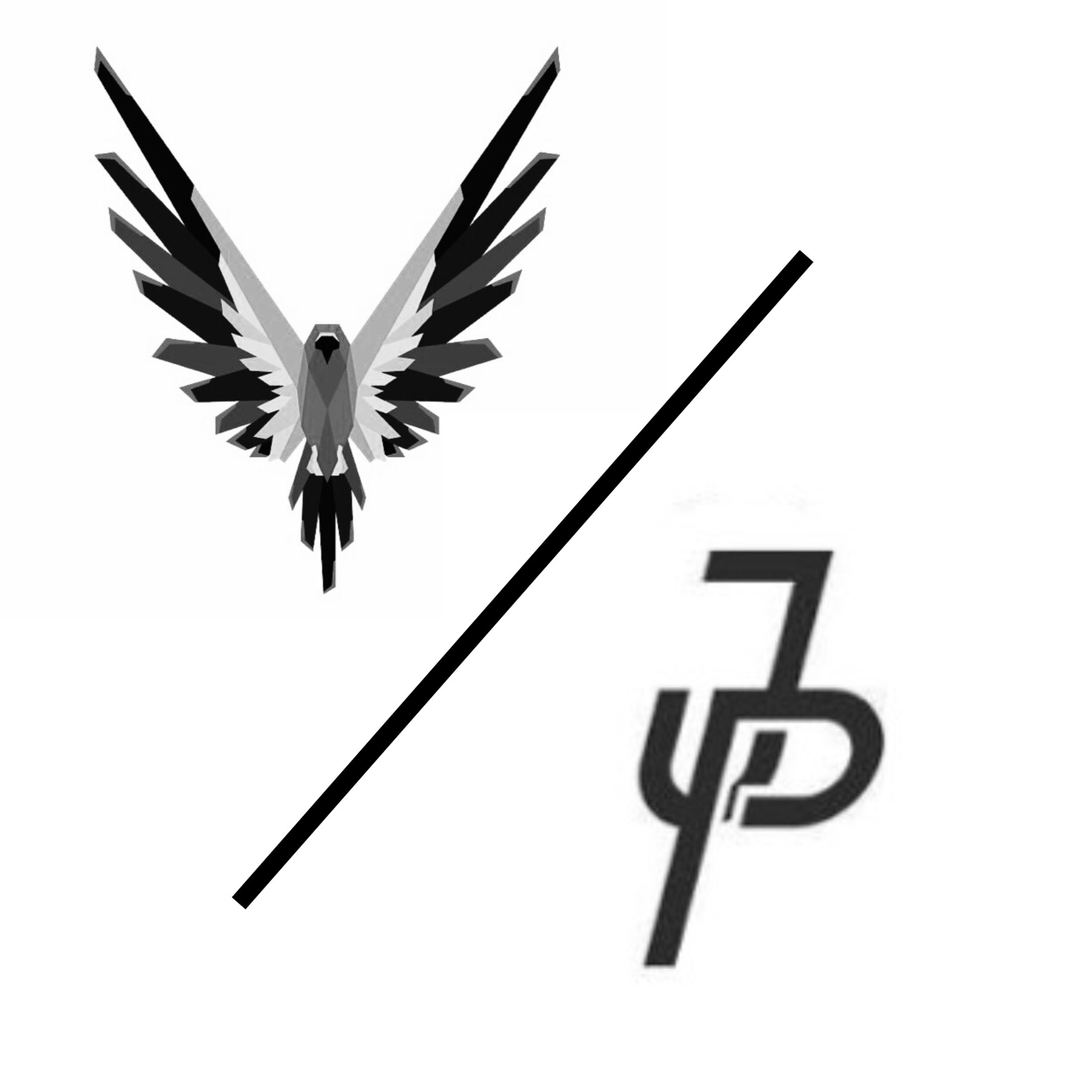 Maverick/Jake Paulers Merch Logo logangpaulers.