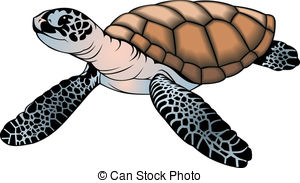 Old sea turtle clipart.