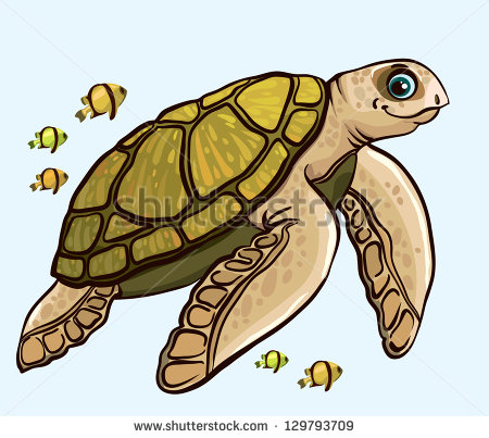 Picture Of Sea Turtles Stock Photos, Royalty.