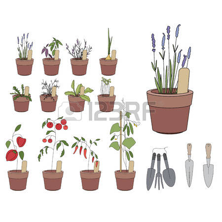 84 Loggia Stock Vector Illustration And Royalty Free Loggia Clipart.