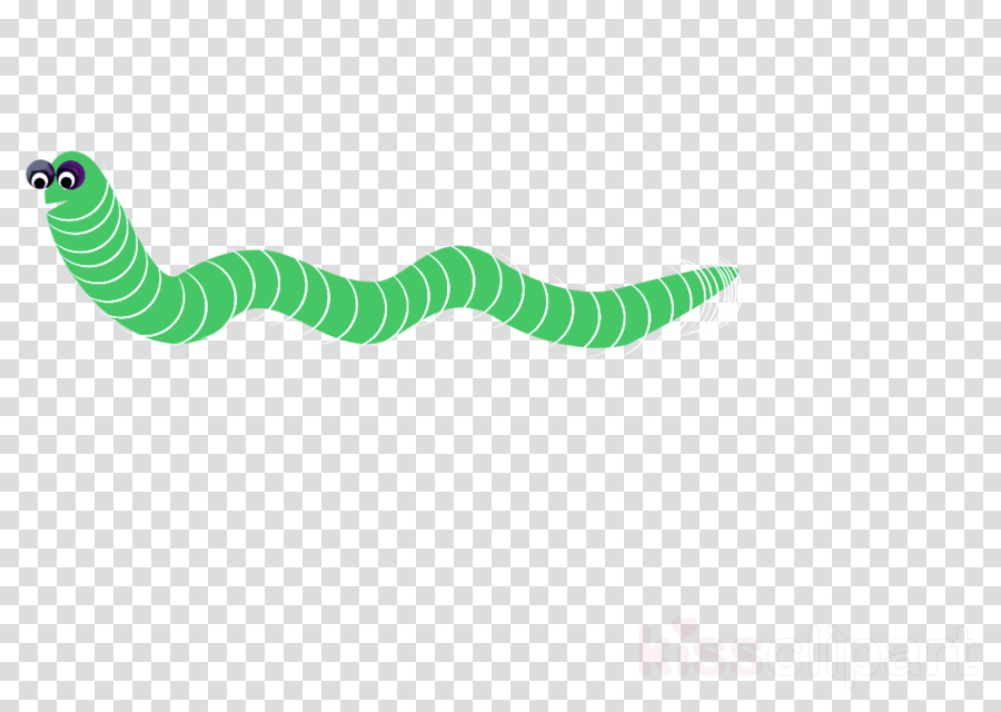 green turquoise line caterpillar logo clipart.