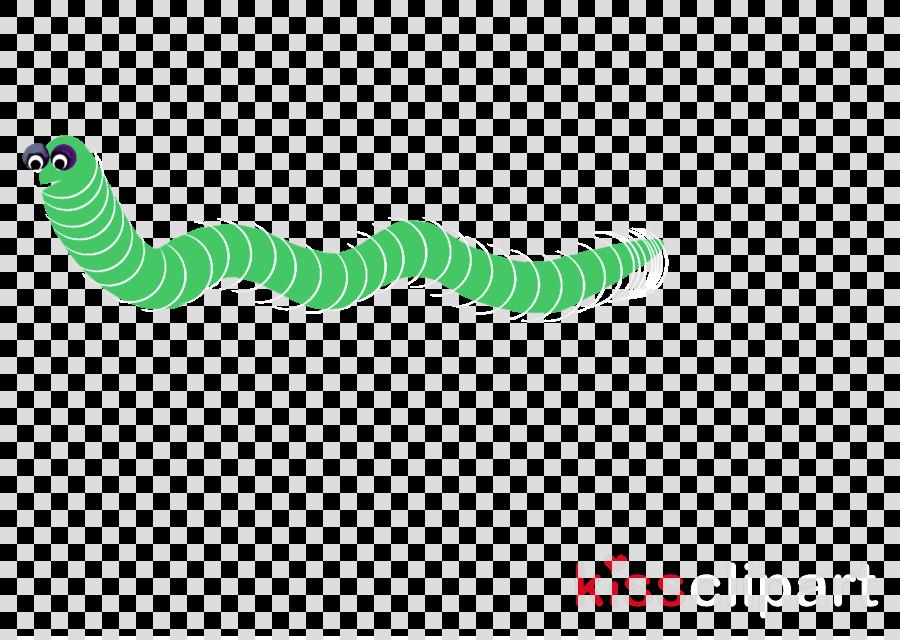 green turquoise line caterpillar logo clipart.