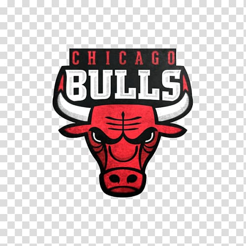 Chicago Bulls NBA Embroidered patch Sport Logo, cara.