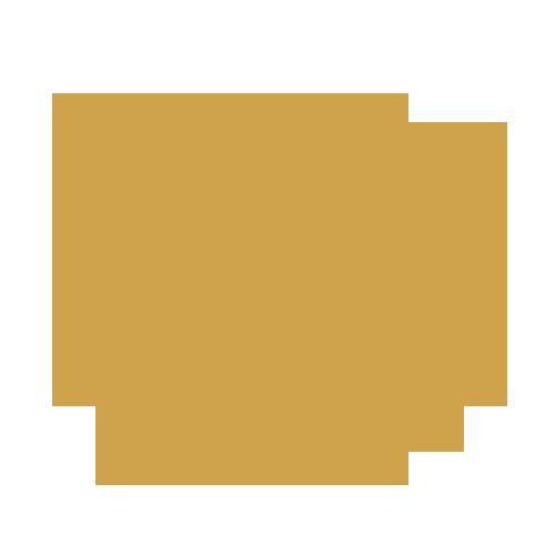 Logo Design Gold Package.