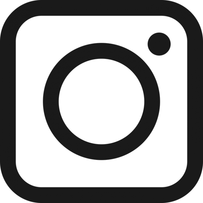 Logo Instagram Blanco Png Vector, Clipart, PSD.