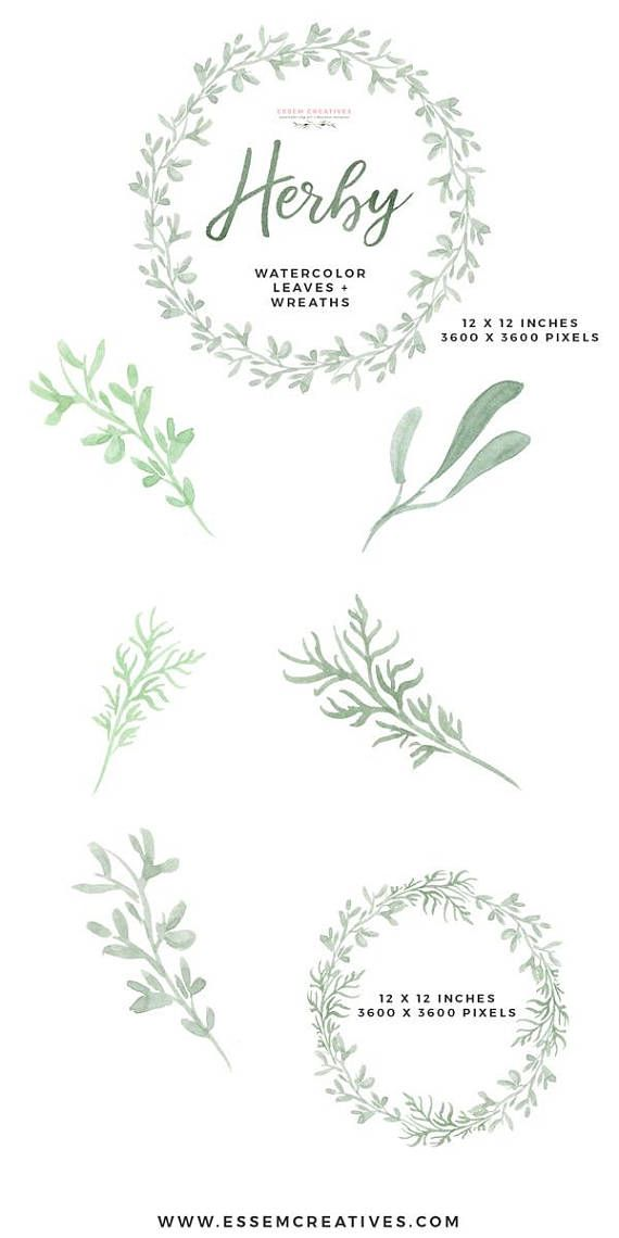 Watercolor wreath clipart, Herb Clipart PNG, Food Clipart.