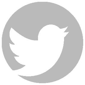 Logo twitter blanc png 4 » PNG Image.